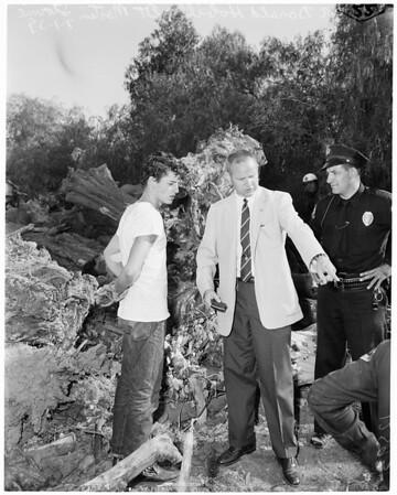 Robbery suspect captured, 1959
