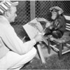Griffith Park Zoo, 1957