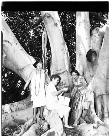 Daniel Freeman Group, 1958