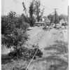 Arcadia bus crash (San Gabriel mission bus crushed 3 cars on Santa Anita Avenue) killed one, 1959