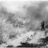 Chavez Ravine fire, 1958