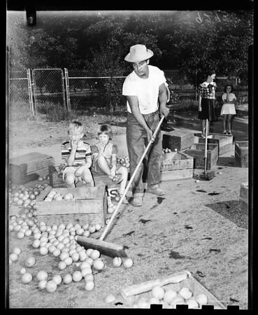 Orange truck loses load, 1951