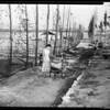Banning Fire, 1951