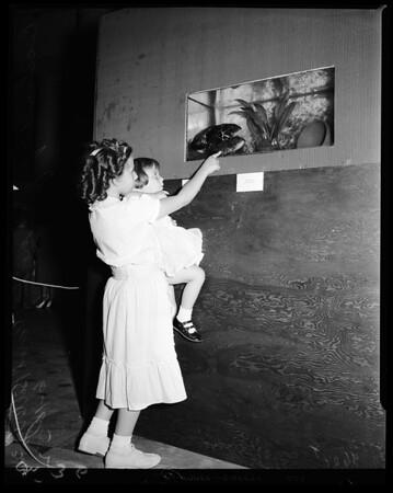 Fish, 1952