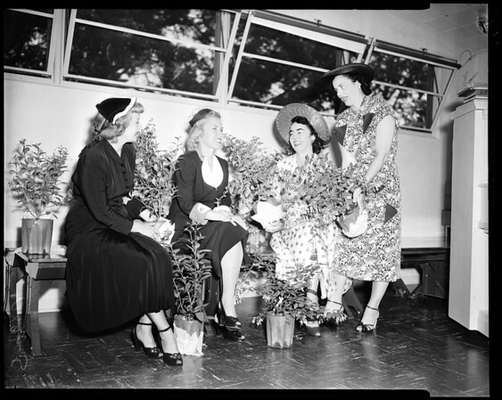 Las Floristas women at Fuchsia tea, 1952