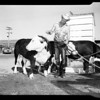 San Bernardino County fair, 1952