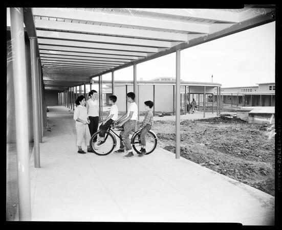 School Registration (West L.A.), 1954