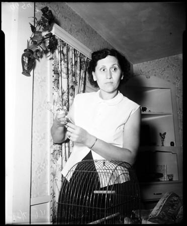 Husband destroyed furniture of estranged wife, 1952