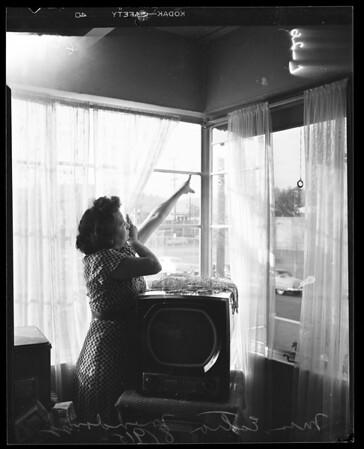 Shooting at 114 East Ann Street, 1952
