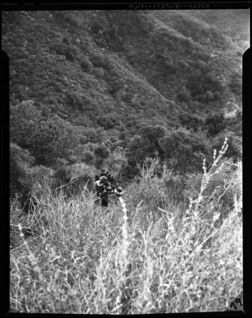 Auto accident in Benedict Canyon (200 feet down embankment), 1957