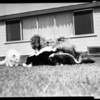 Four half grown skunks, 1956