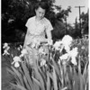 Iris growing champion, 1952