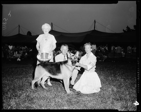 Dog show (26th Annual Show Santa Barbara Kennel Club), 1954