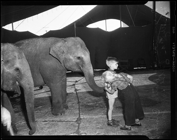 Shrine circus (Shrine Auditorium), 1954