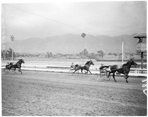 Horses - race - Santa Anita - Harness, 1957