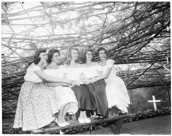 Wisteria Princesses, Sierra Madre, 1954