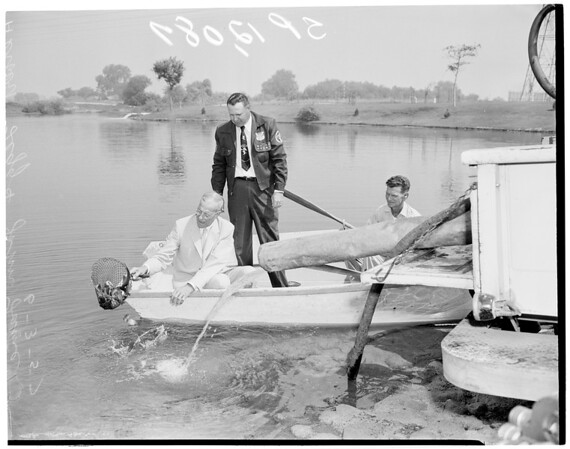 Planting trout in Legg Lake, 1957