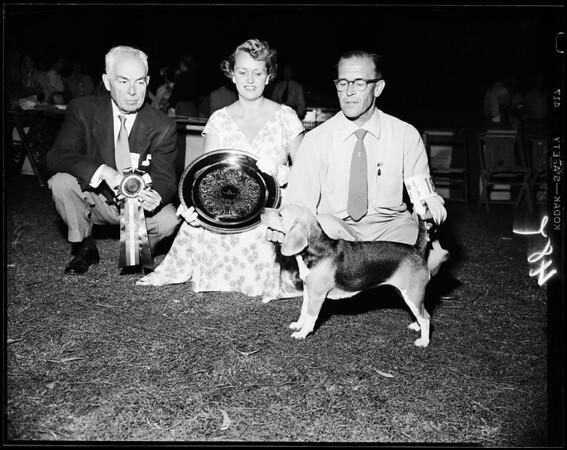 Dog show - Pasadena, 1954