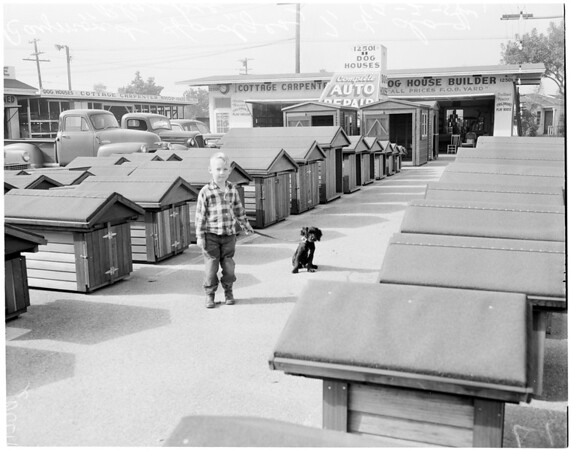 Dog houses sold by cottage carpentry shop in Long Beach, 1956
