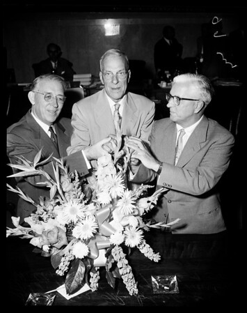 Elected supervisors, 1954