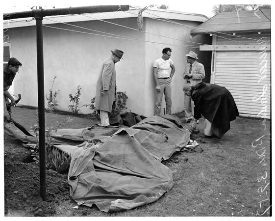 Dig up ancient Indian bones, 1957