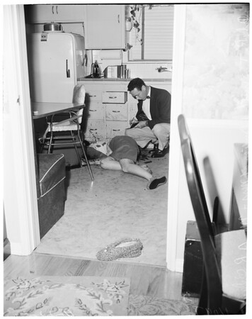 O'Dwyer murder-suicide, 1954