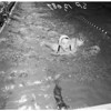 Swimming senior Women's National Indoor Championships, 1957