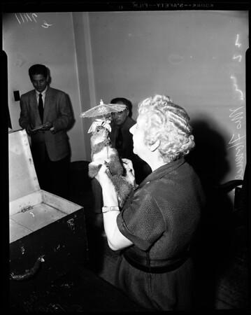 Hinton versus Paramount Television, 1954