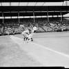 Hollywood versus San Diego -- baseball, 1955