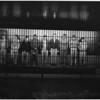 Narcotic Raid, 1956