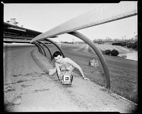 New aluminum rail around Hollywood Park race track, 1954