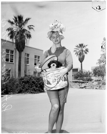 Hat and clash day at John Muir High School in Pasadena, 1960
