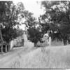 Ramakrishna Monastery in Trabuco Canyon, 1960
