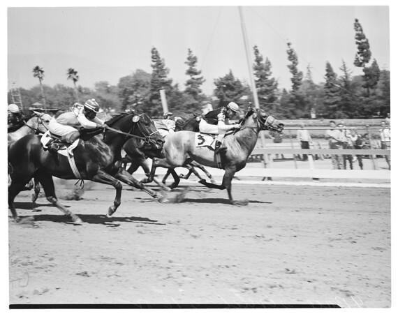 Pomona Races, 1955