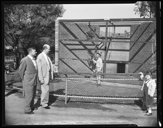 Councilmen inspect Griffith Park Zoo, 1957