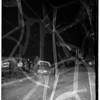 Auto shears pole... Orange Ave. and Harding St. (north Long Beach), 1951