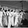 All-male dog litter (San Pedro) (Cocker Spaniels), 1952