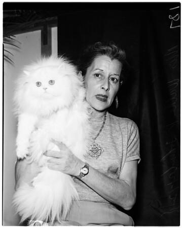 Cat show, 1958