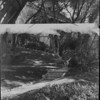 Stone steps and a walkway in Busch Gardens, ca. 1919-1940