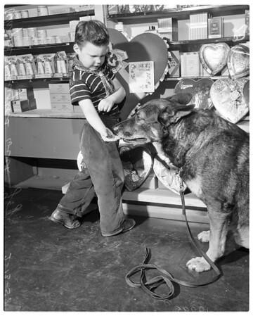 Valentine Day Negatives, 1958.
