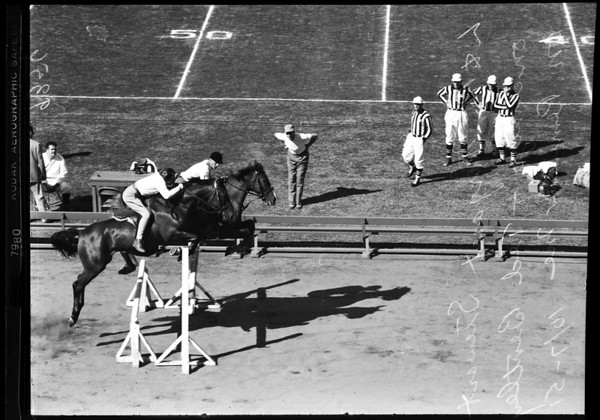 Horse jumping, 1951