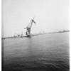 Giant former German floating crane largest in world, 1951