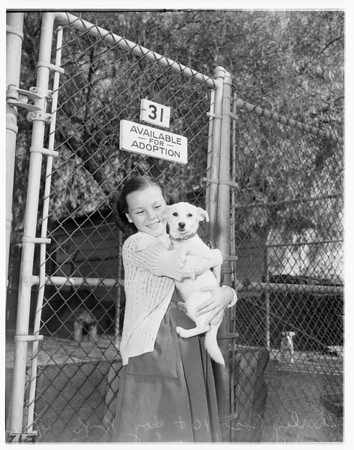 Girl adopts her first pet (a dog from City Animal Shelter in Long Beach), 1951