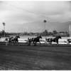 Horses -- race -- harness -- Santa Anita, 1958