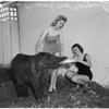 Baby elephant, 1958