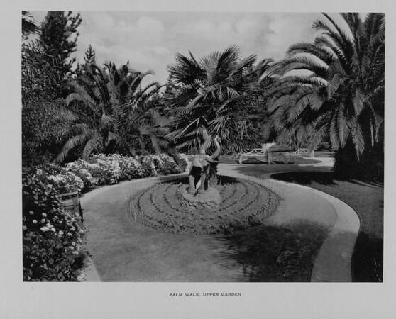 The Palm Walk in the Upper Garden of Busch Gardens, ca. 1910-1940