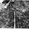 Close-up of street sign for Tigertail Road, Brentwood Hills, 1959