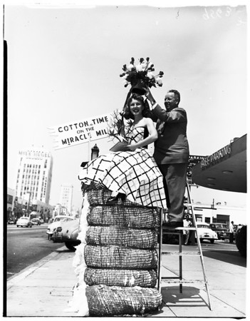 Miracle Mile Association cotton queen crowned, 1952