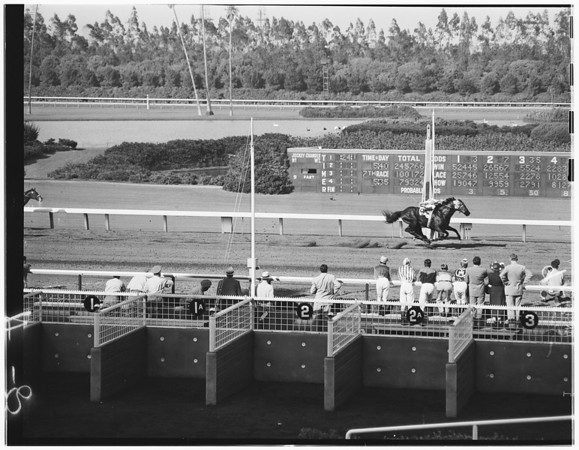 Hollypark races, 1951