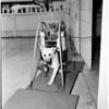 Automatic dog brusher, 1958